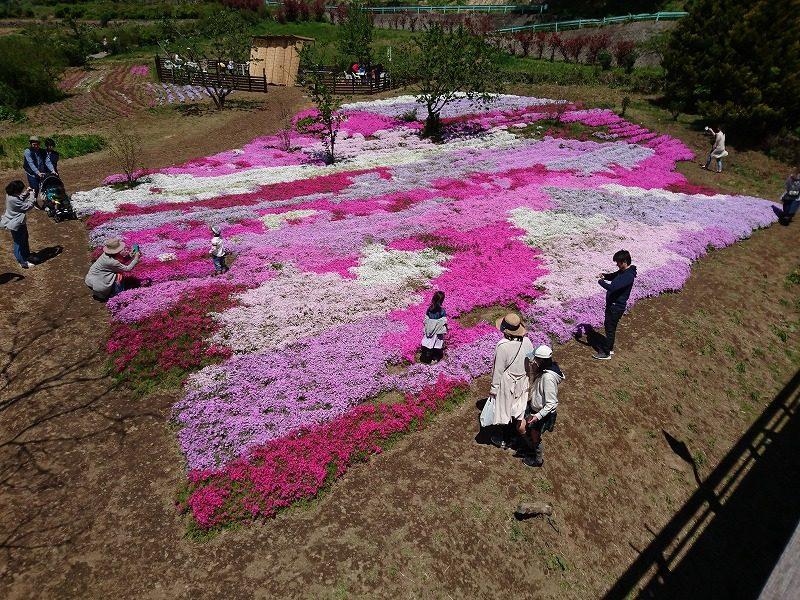 長沢鯉のぼり祭り