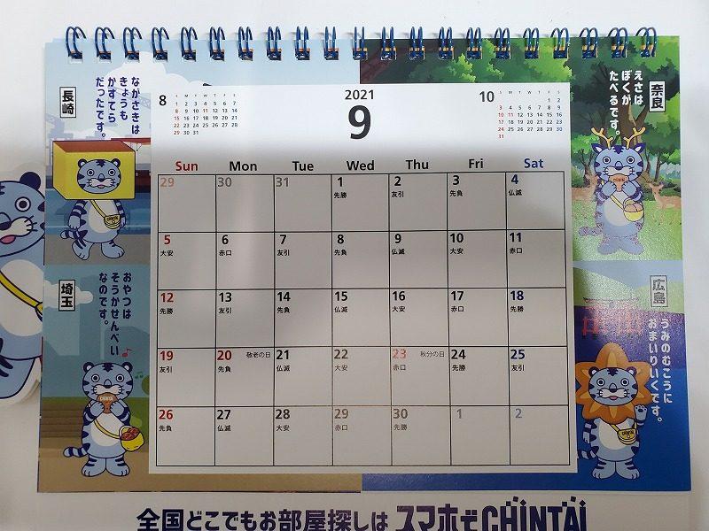 CHINTAIカレンダー2021